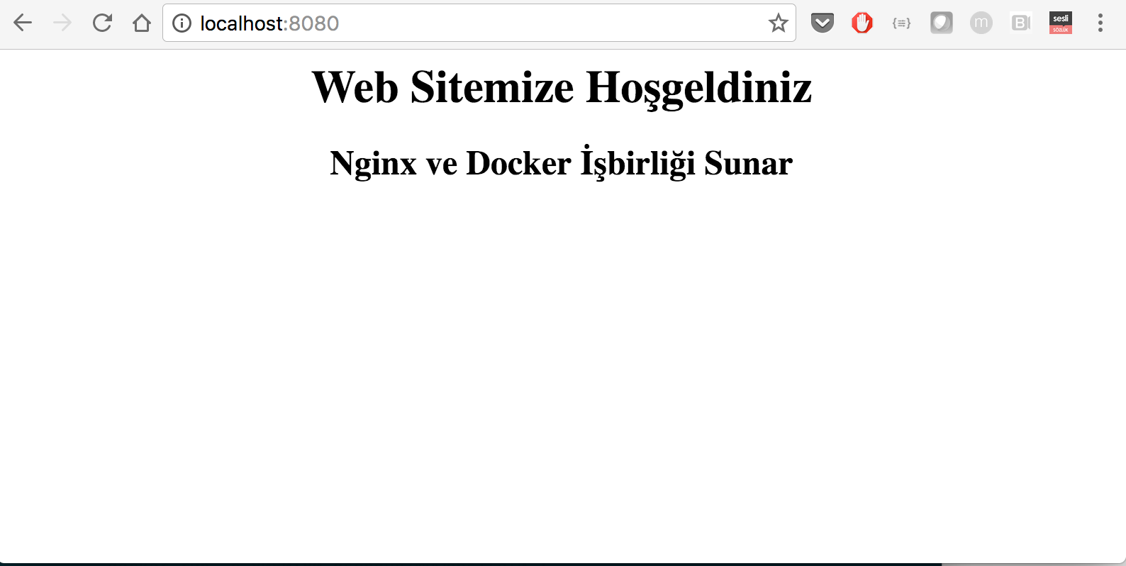 Serve Web Site with Nginx using Docker